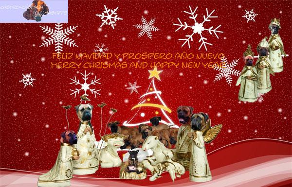 Feliz Navidad a Tod@s Felicita2010